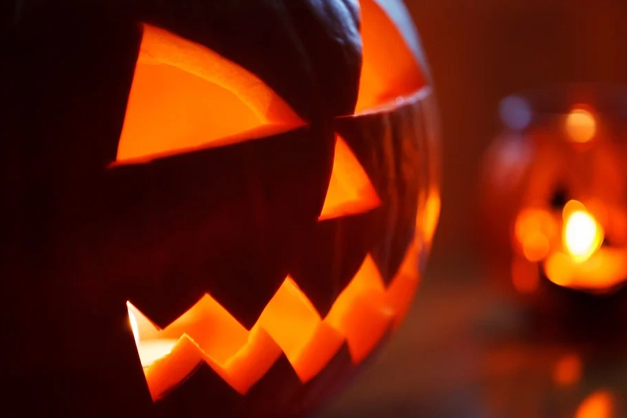 Trick or Treat – Pumpkins Are a Treat for Your Vision!